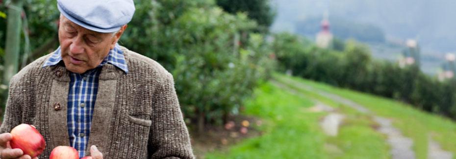 Mann mit Apfelbaeumen