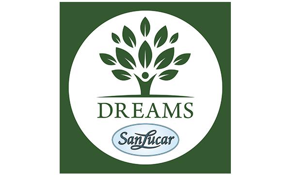 Logo dreams-low