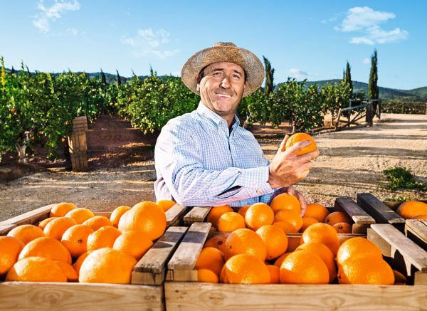 diabetes erdbeeren fruchtzucker