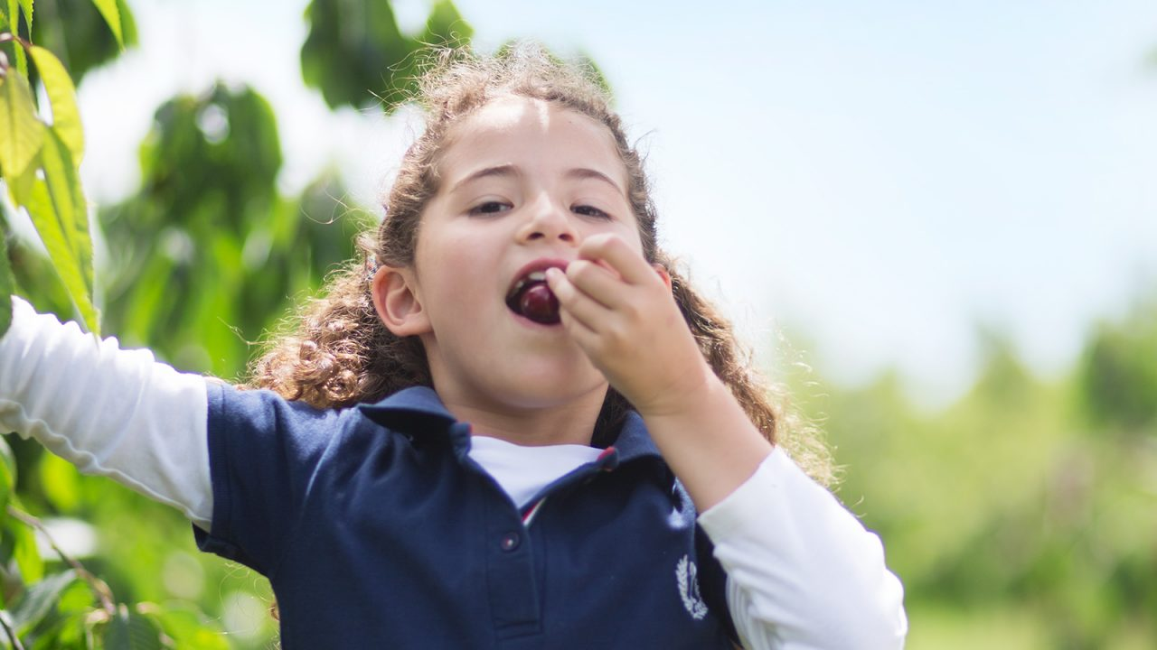 This is how kids love fruit and vegetables