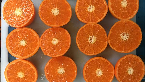 Mandarinas del país de los canguros