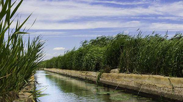 Was macht ihr, um Umweltressourcen zu schonen?