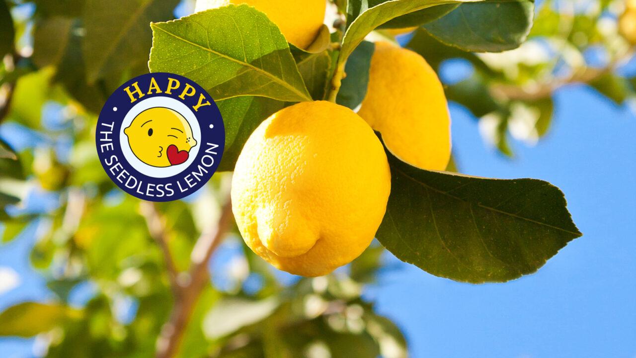 Keine Kerne? Gerne! Mit unserer »Happy Lemon«.