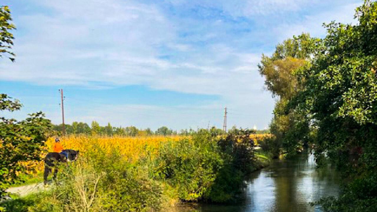 Eine Brücke für »KINDER STÄRKEN e.V.«