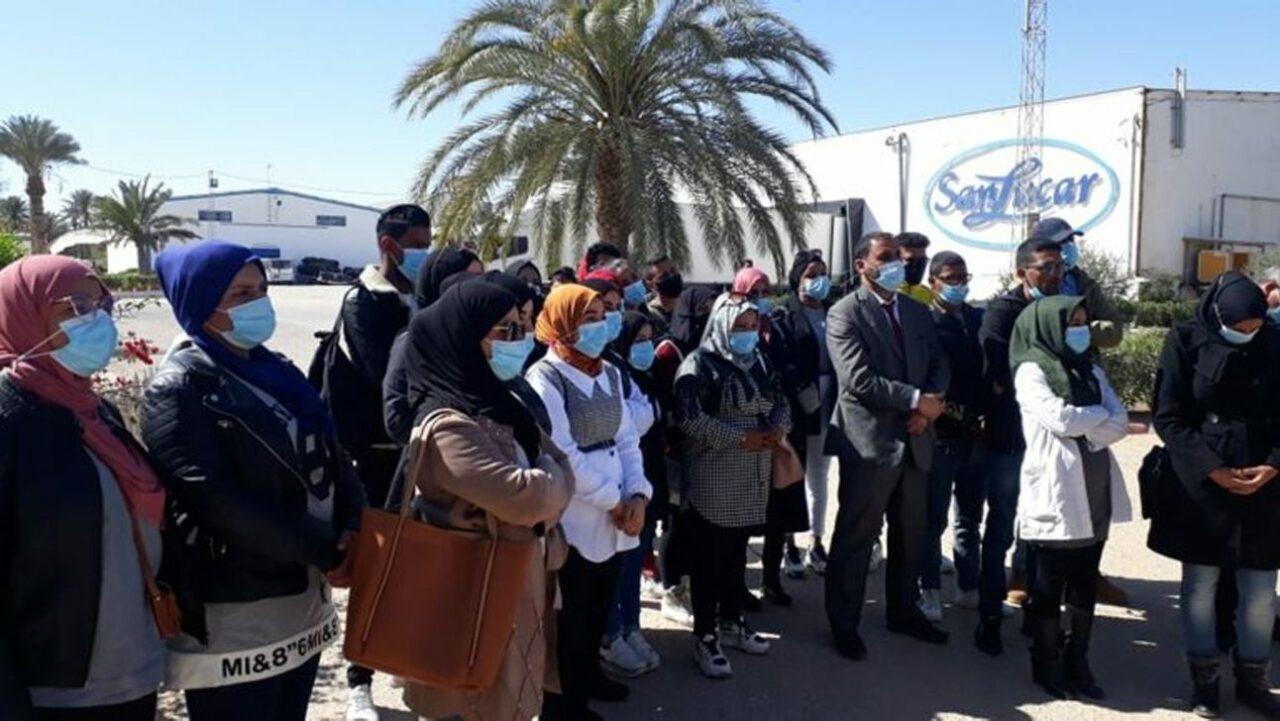 SanLucar bietet Jugendlichen Zukunftschancen im tunesischen Agrarsektor