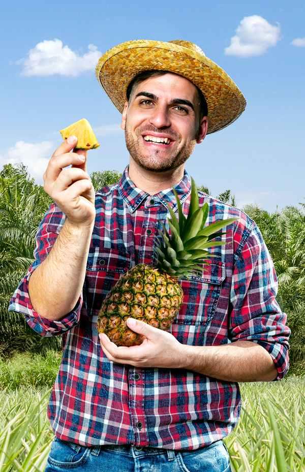 ananas_ausbildung