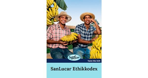 ethikkodex_de