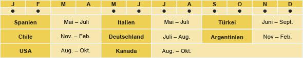Spanien: Mai - Juli, Italien: Mai - Juli, Tuerkei: Juni - September, Chile: November - February, Deutschland: Juli - August, Argentinien: November - Februar, USA: August - Oktober, Kanada: August - Oktober