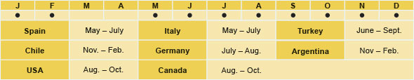 Spain: May - July, Italy: May - July, Turkey: June - September, Chile: November - February, Germany: July - August, Argentina: November - Febuary, USA: August - October, Canada: August - October
