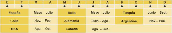España: Mayo - Julio, Chile: November - Febrero, USA: Agosto - Octubre, Italia: Mayo - Julio, Turquia; Junio - Septiembre, Chile: Noviembre - Febrero, Alemania: Julio - Agosto, Argentina: Noviembre - Febrero, USA: Agosto - Octubre, Canada: Agosto - Octubre