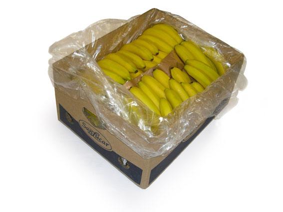 Bananen von SanLucar im Karton