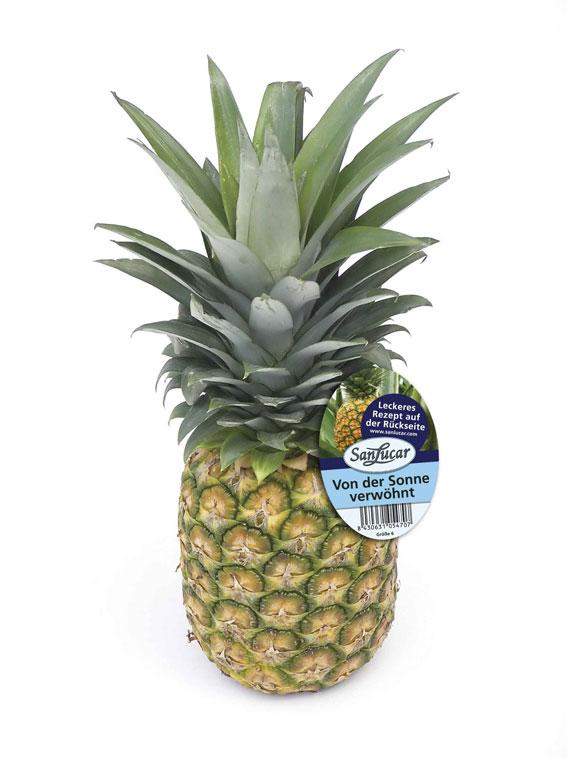 SanLucar Ananas - mit Info- und Rezeptefolder