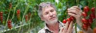hombre con tomates