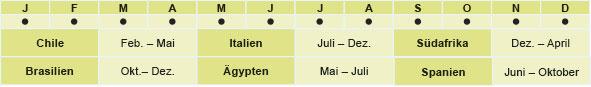 Chile: Februar - Mai, Italien: Juli - Dezember, Suedafrika: Dezember - April, Brasilien: Oktober - Dezember, Aegypten: Mai - Juli, Spanien: Juni - Oktober