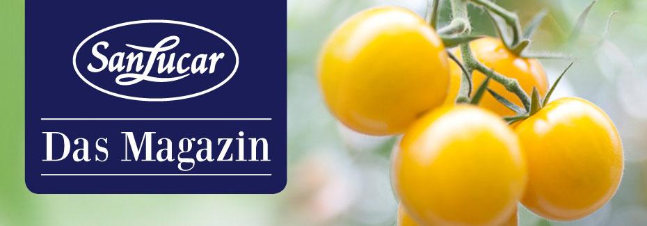 SanLucar gelbe Tomaten