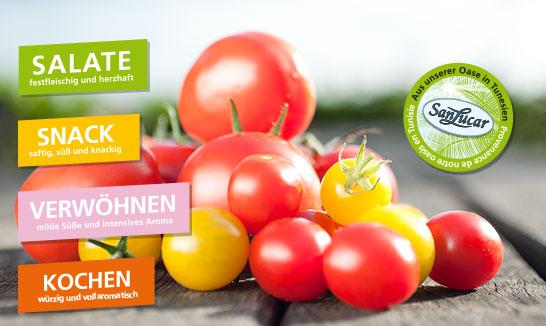 tomate_artikelbild_tomatenkonzept