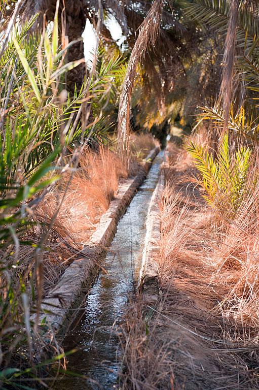 agua geotermal del oasis de los tomates